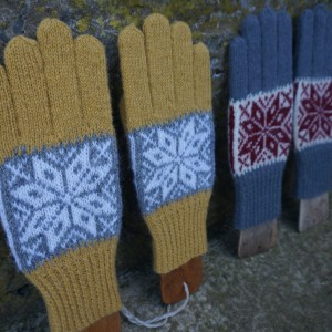 Gloves on boards2 (3)